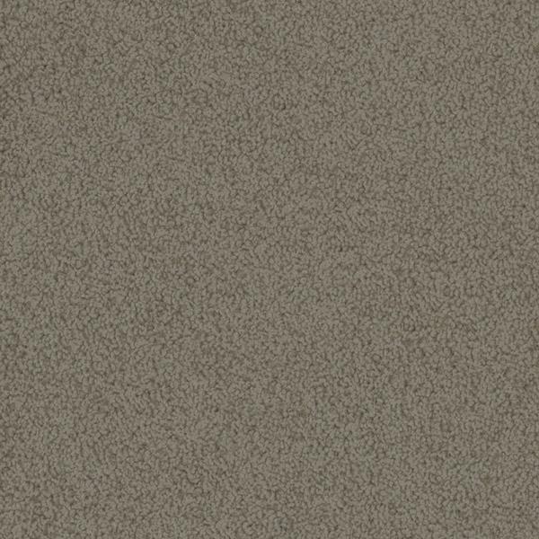 Godfrey Hirst Beige Carpet