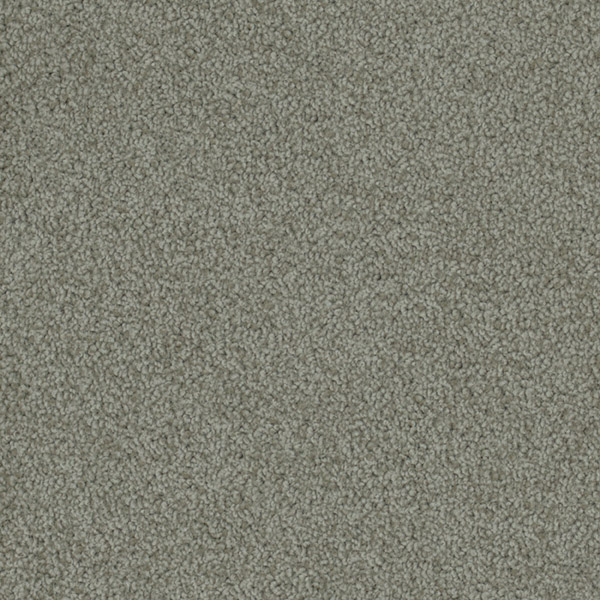 Godfrey Hirst Grey Carpet