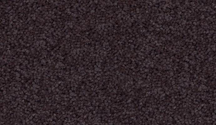 Godfrey Hirst Eco Inspirational Purple Carpet
