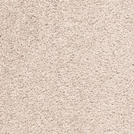 Signature Scarlet Amaryllis Carpet