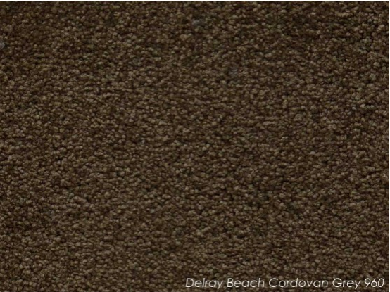 Tuftmaster Delray Beach Cordovan Grey Carpet